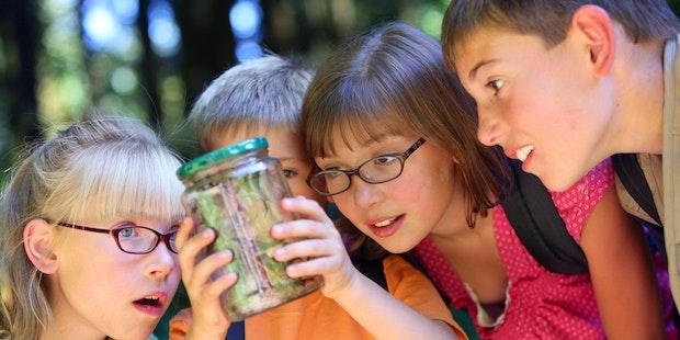 Kids Holding Jar Of Bugs 800 X 600