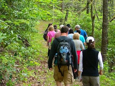 Wildacres Hike