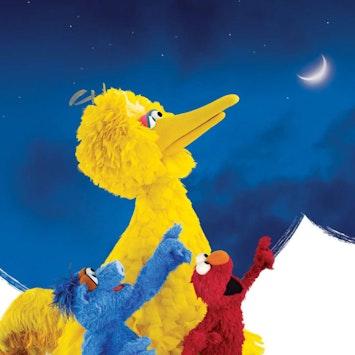 Big Bird Elmo Moon Inset